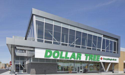Dollar Tree view 1